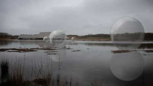 bubbles at Brockholes